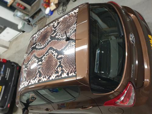 Carwrapping dak