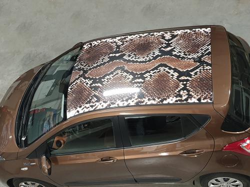 Carwrappen dak